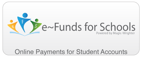 Online Payments: eFunds